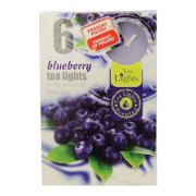 CAJ.sviecky 6ks cucoriedka/blueberry