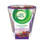 AIR WICK sviecka 105g Ess Oil.L.plod